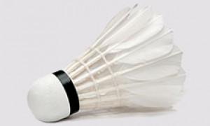 Badminton Nedir?